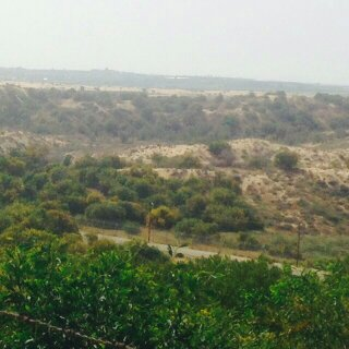 Area where tunnel was discovered coming into Israel from Gaza